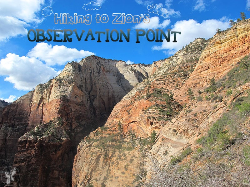 Zion National Park Observation Point Hike