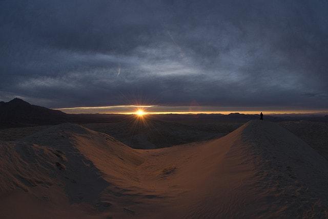 Kelso-Sand-Dunes