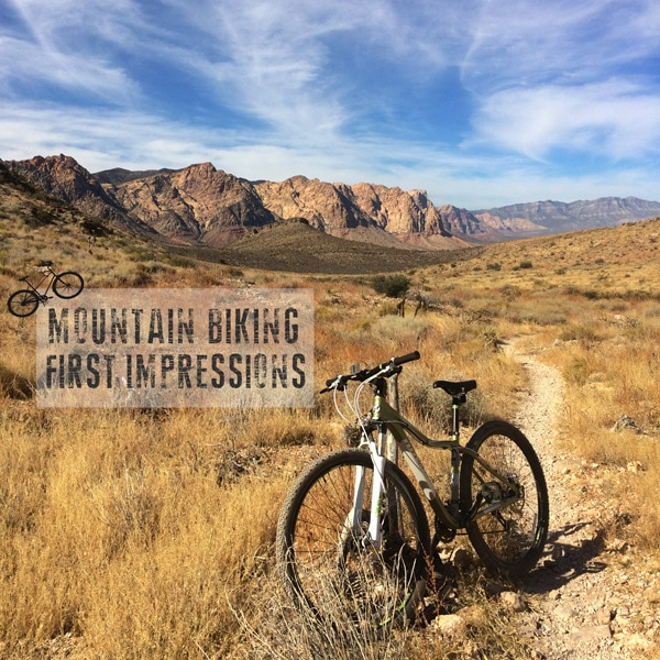 first-impressions-of-mountain-biking