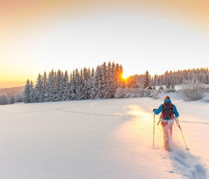 Planning a snowy vacation this winter? Here are 10 awesome places to go snowshoeing west of the Rockies.