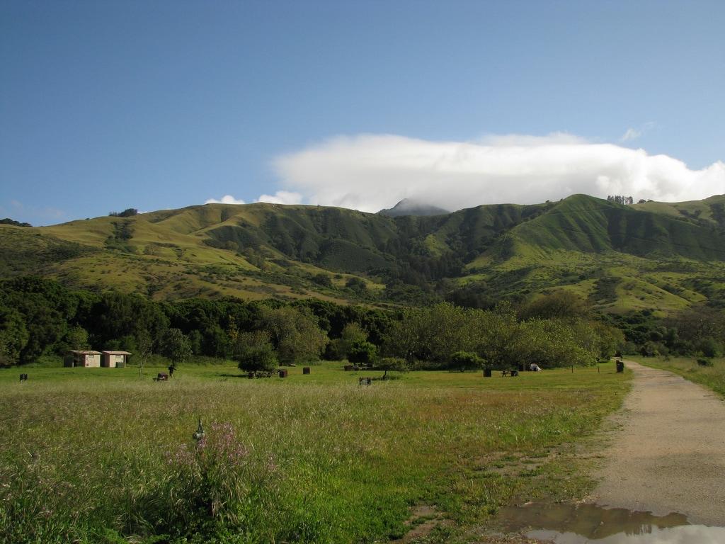Best walk up campsites in California: Andrew Molera State Park