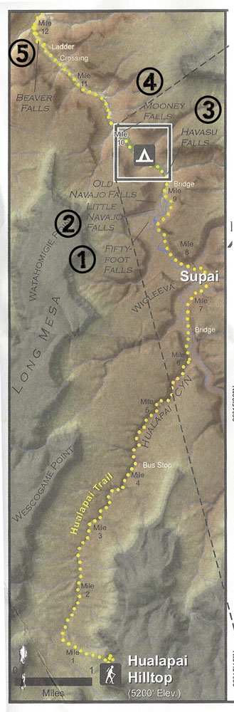 Map of the 5 Waterfalls of Havasu Canyon on Arizona's Havasupai Indian Reservation