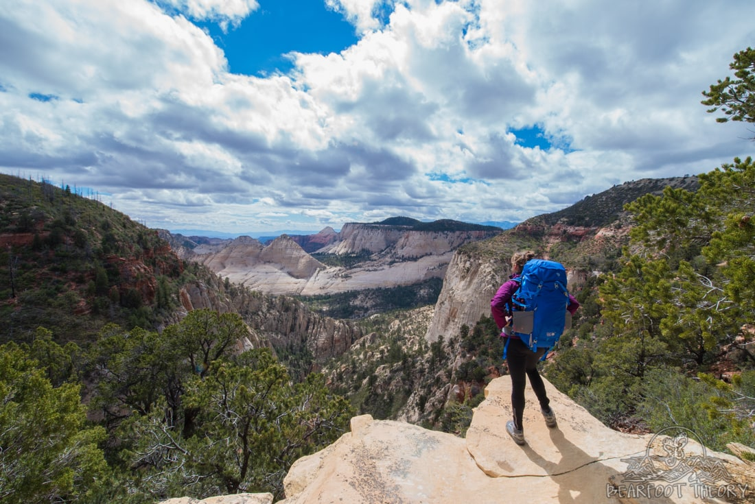 Views of Imlay Canyon on the West Rim Trail in Zion National Park