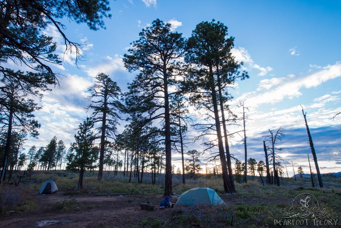 Campsite 4 on the West Rim Trail in Zion National Park