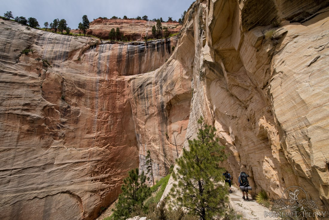 The West Rim Trail in Zion National Park