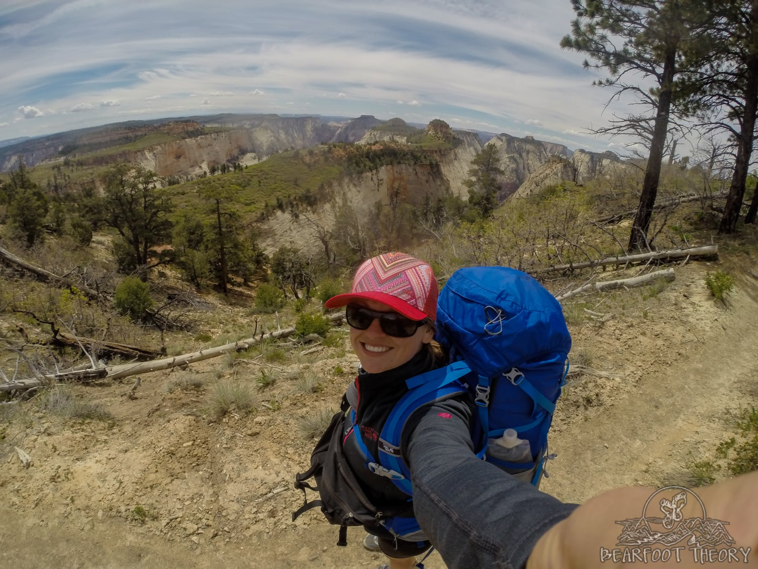 Zion National Park West Rim Trail Backpacking Guide