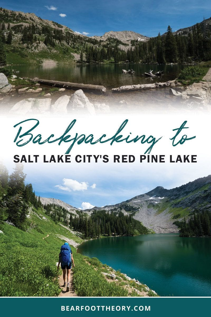 A detailed hiking and backpacking guide to Red Pine Lake - one of the most beautiful spots in the Wasatch just 35 minutes from downtown Salt Lake.