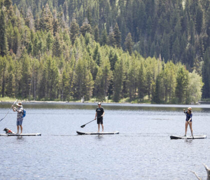 Want to try stand up paddle boarding this summer? Learn the basics of SUP with our beginner paddle boarding guide!