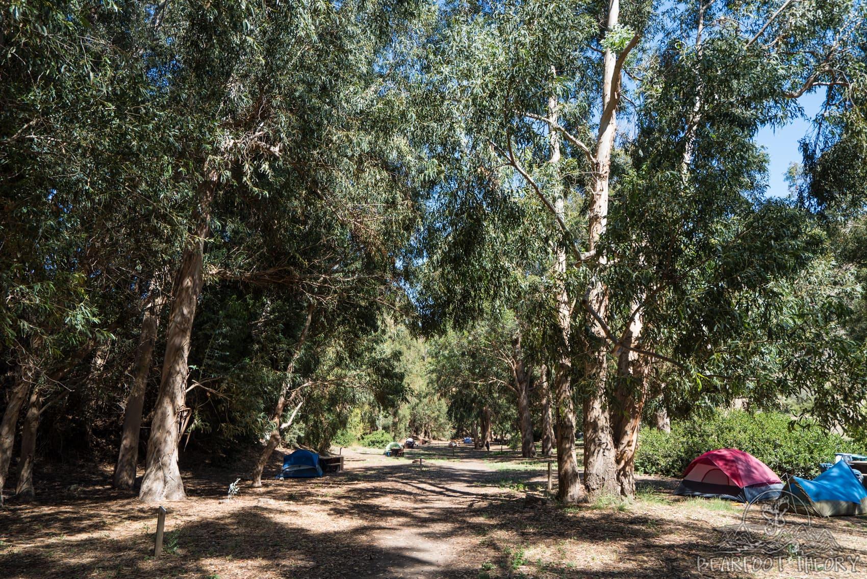 Camping at Scorpion Ranch Campground on Santa Cruz Island