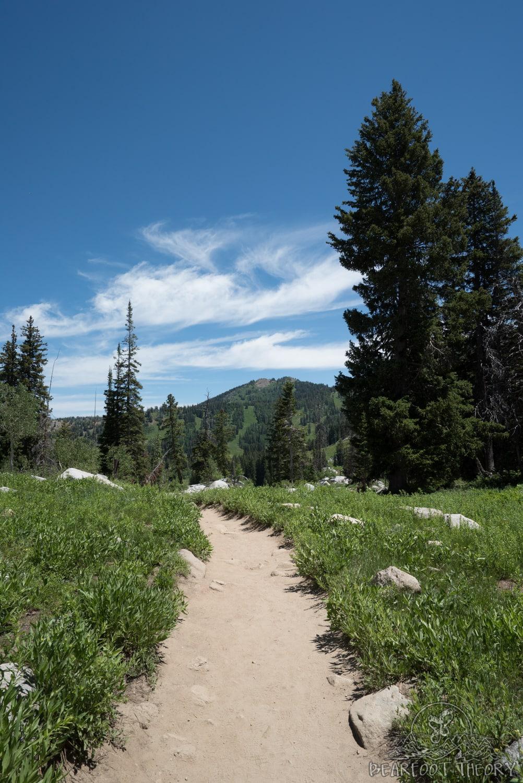 Hiking 101: Beginner Hiking Tips