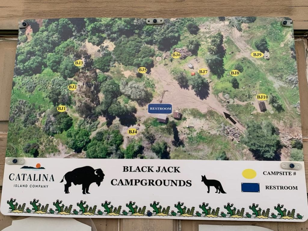 Black Jack campground map on the Trans Catalina Island Trail