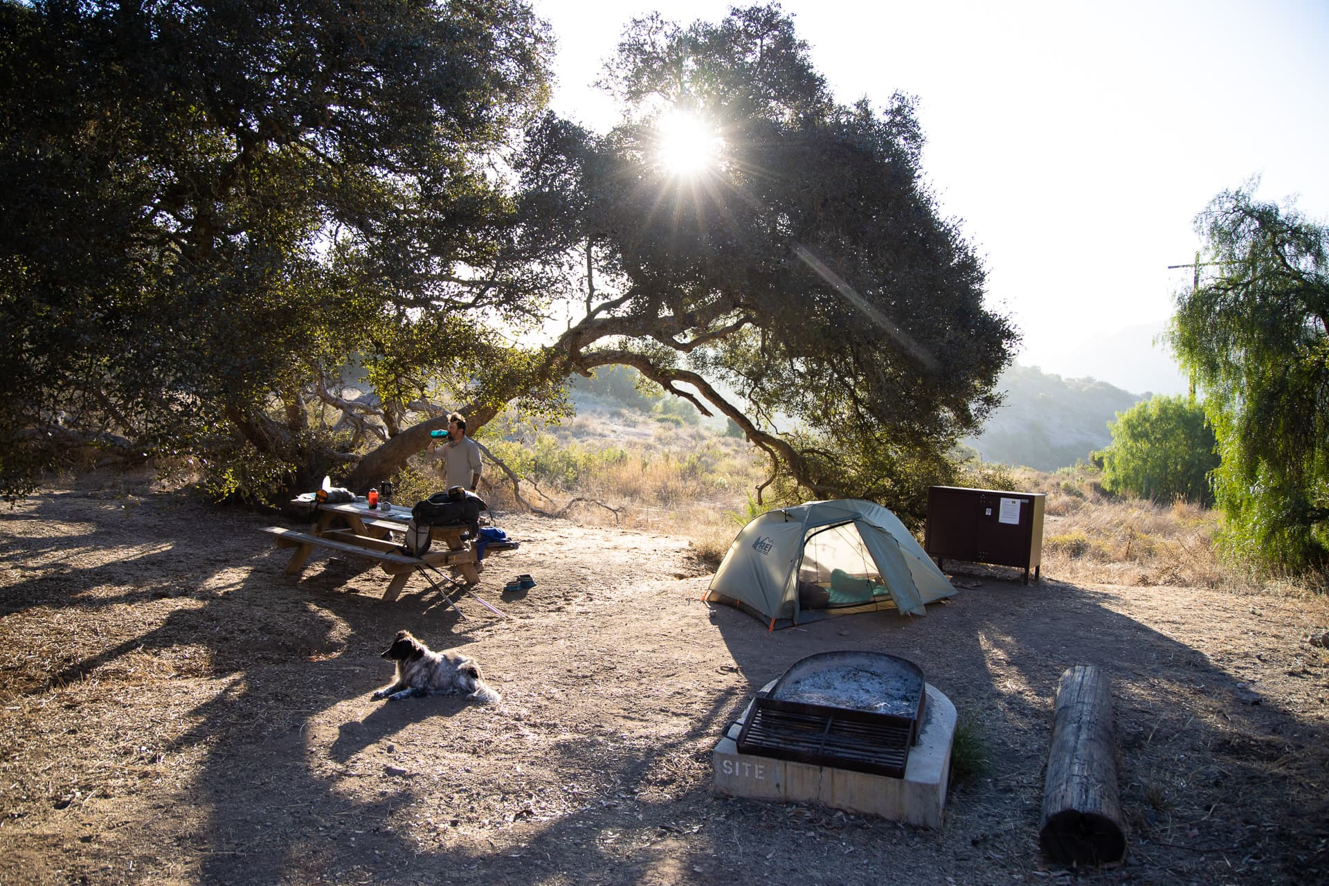Black Jack Campground // Plan a backpacking trip on the Trans-Catalina Trail on Catalina Island with this trail guide with tips on the best campsites, water availability, gear & more