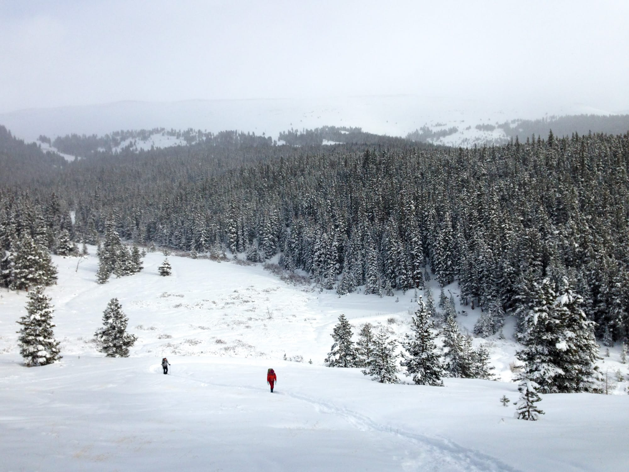 Reason to take a backcountry hut trip - #1: Far from the crowds, close to the powder