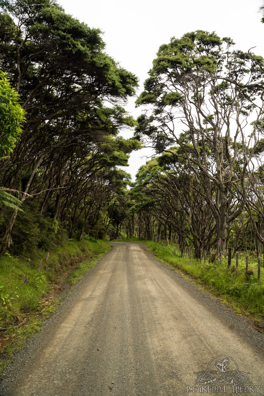 New Zealand Road Trip Itinerary: The road from Raglan to Ruapuke