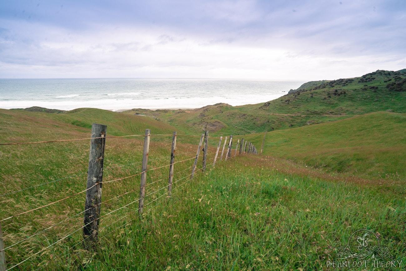 New Zealand Road Trip Itinerary: Hiking to Ruapuke Beach from Ruapuke Motor Park