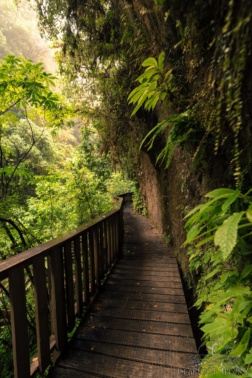 New Zealand Road Trip Itinerary: Mangapohue Natural Bridge