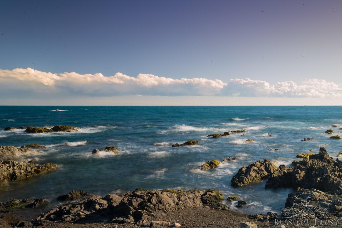 New Zealand Road Trip Itinerary: Onihowa Bay in Wellington