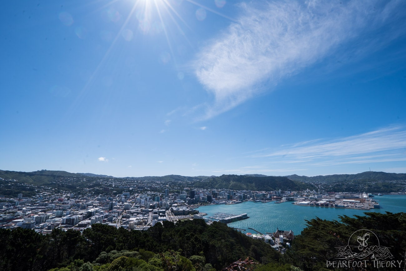 New Zealand Road Trip Itinerary: Mt. Victoria Lookout in Wellington