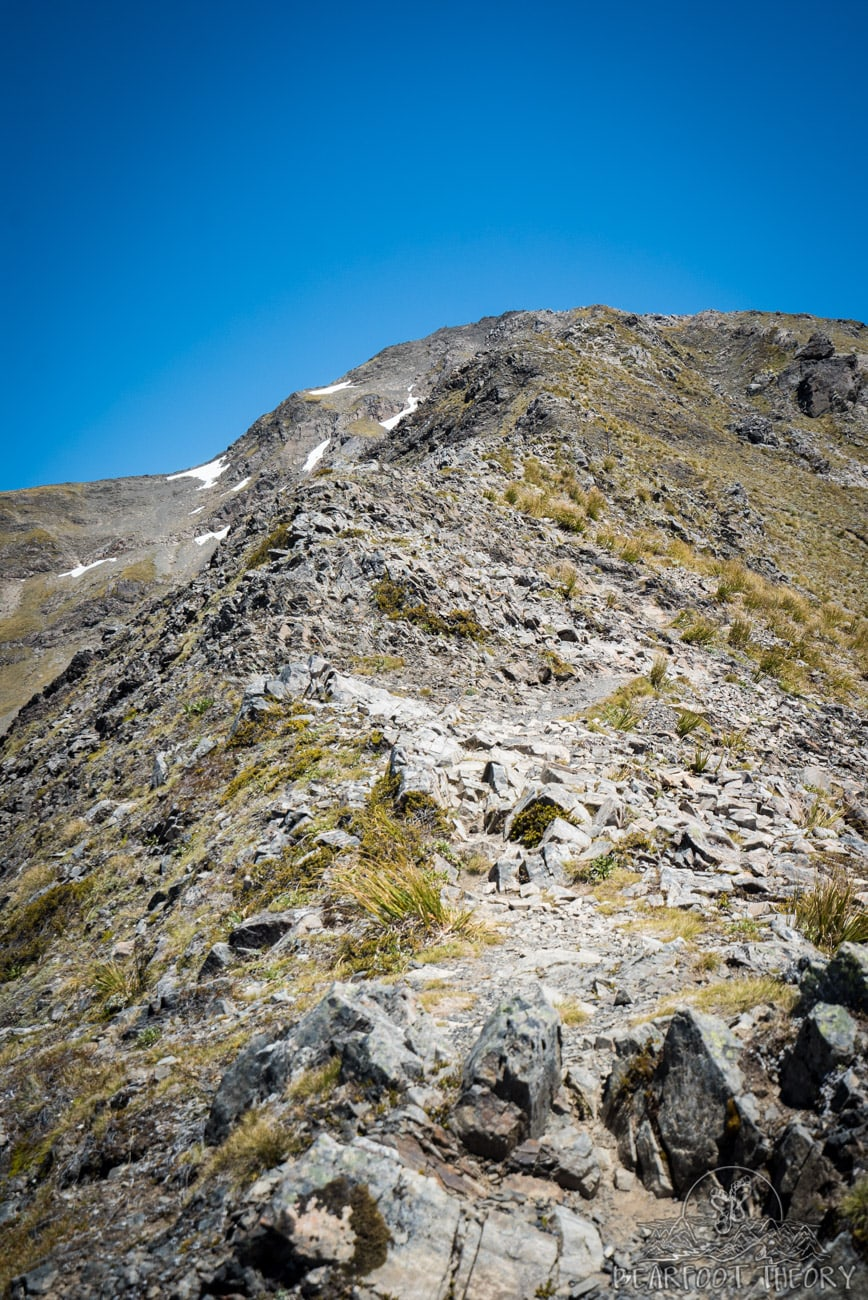 New Zealand Trip: Week 3 Highlights and Itinerary - hiking Avalanche Peak in Arthur's Pass National Park
