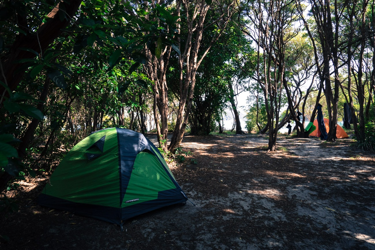 Camping at Anchorage Bay in Abel Tasman National Park