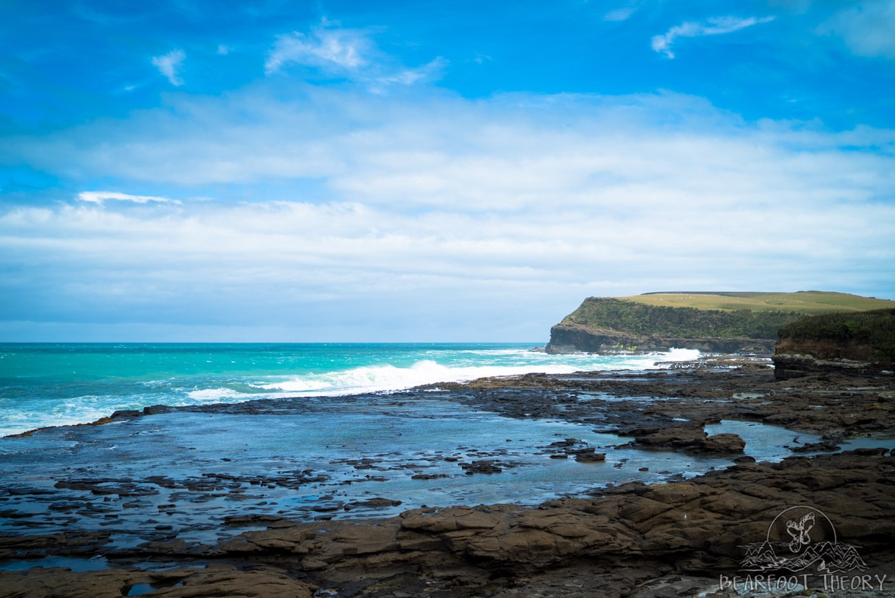 New Zealand Road Trip: Curio Bay in the Catlins