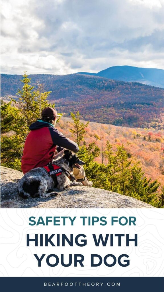 Learn the best safety tips for hiking with a dog so that you can make the most of your day on the trail with your furry friend.