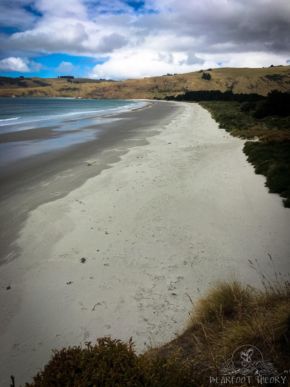 New Zealand road trip: Climbing at Long Beach in Dunedin