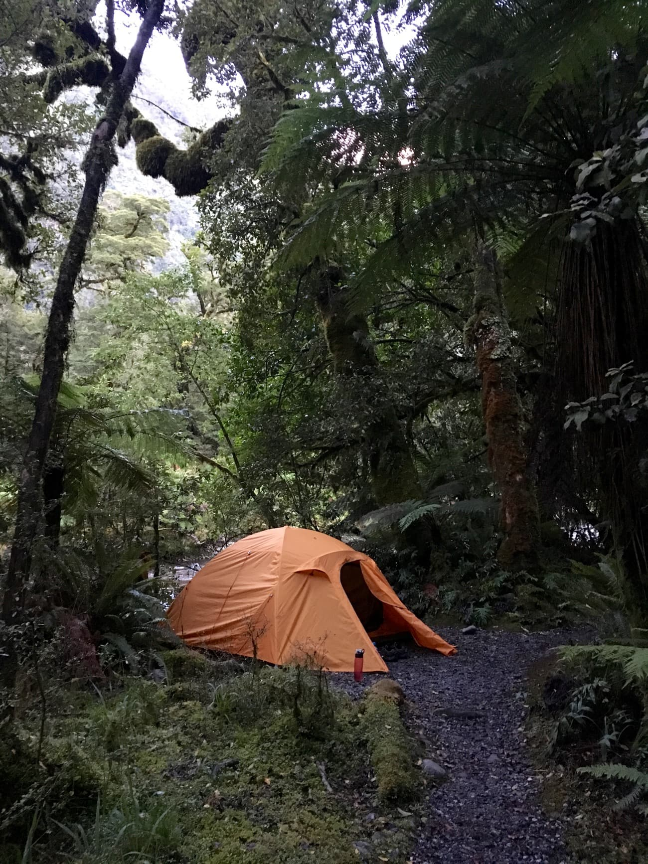 My campsite on my Doubtful Sound overnight kayaking trip with Go Orange.