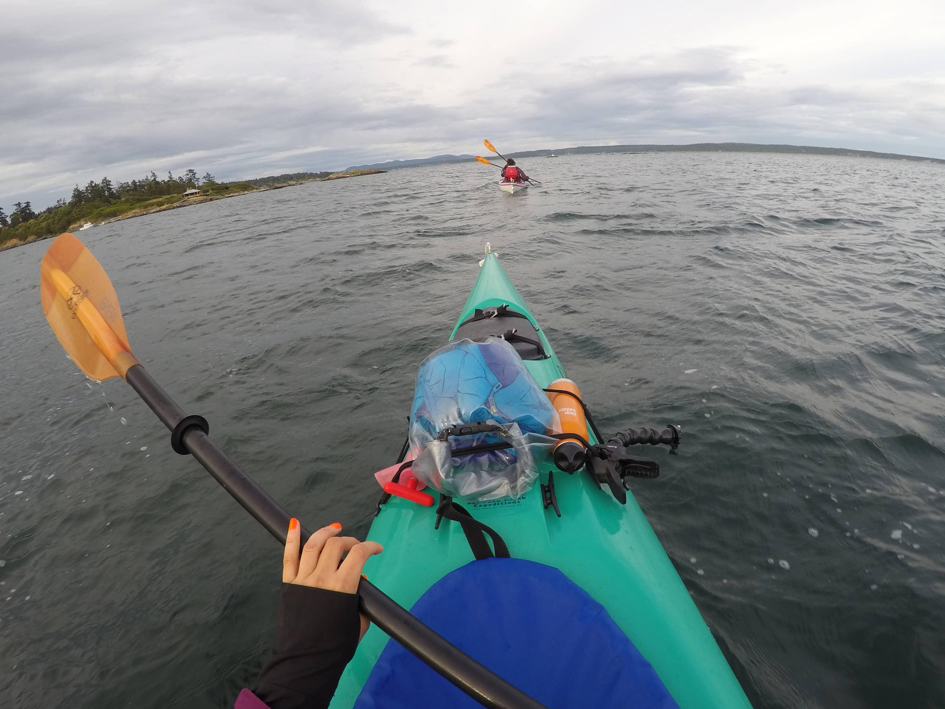 Kayaking Griffin Bay with San Juan Kayak Expeditions