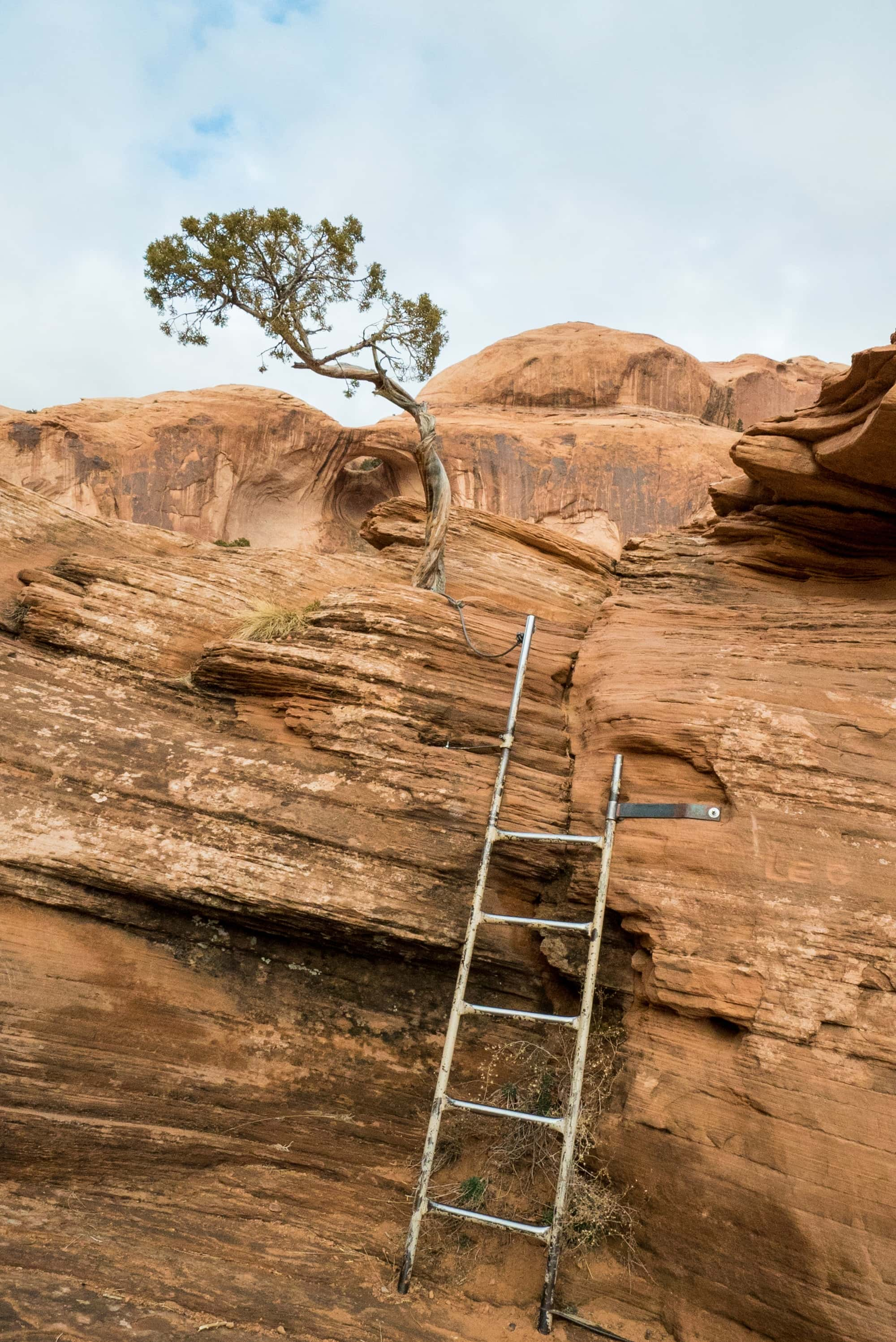 Ladder on the Corona Arch trail // Get the full hiking guide here