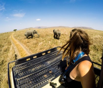 Best places to go on a safari in tanzania