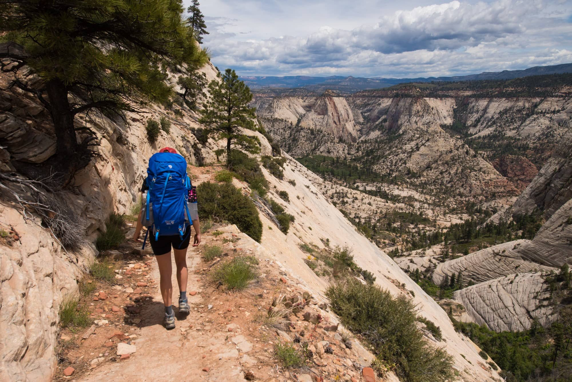 West Rim Trail Backpacking Guide in Zion National Park