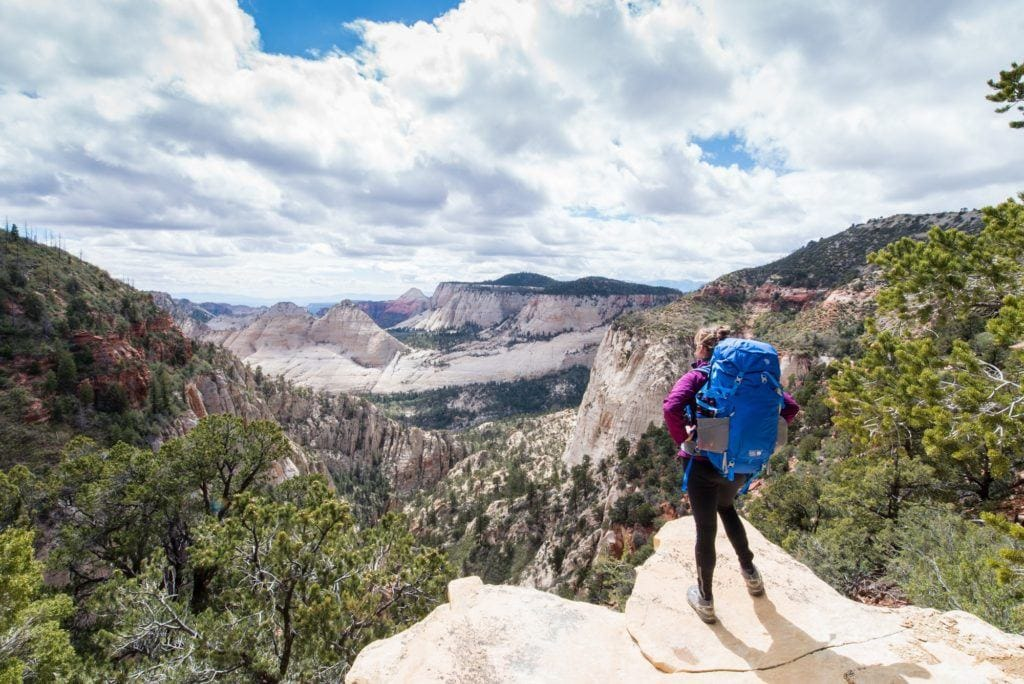 Plan your Zion West Rim Trail backpacking trip with this detailed guide that includes info on permits, campsites, gear, and more.