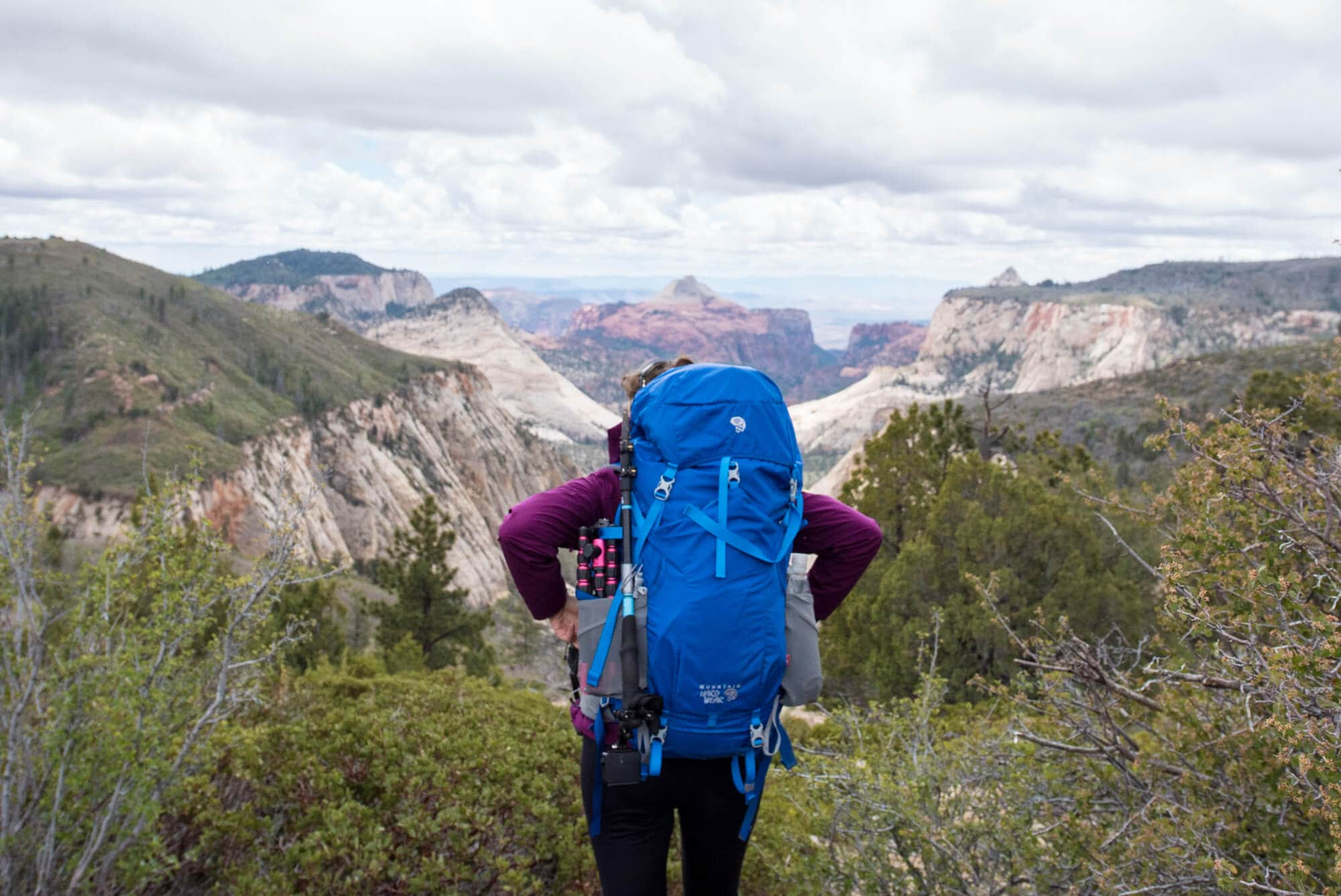 Learn everything you need to know about backpacking packs & the most important factors to consider when choosing a pack for your multi-day adventures. We also share a list of the best backpacking packs for thru-hikers, weekend hikers, and folks on a budget.