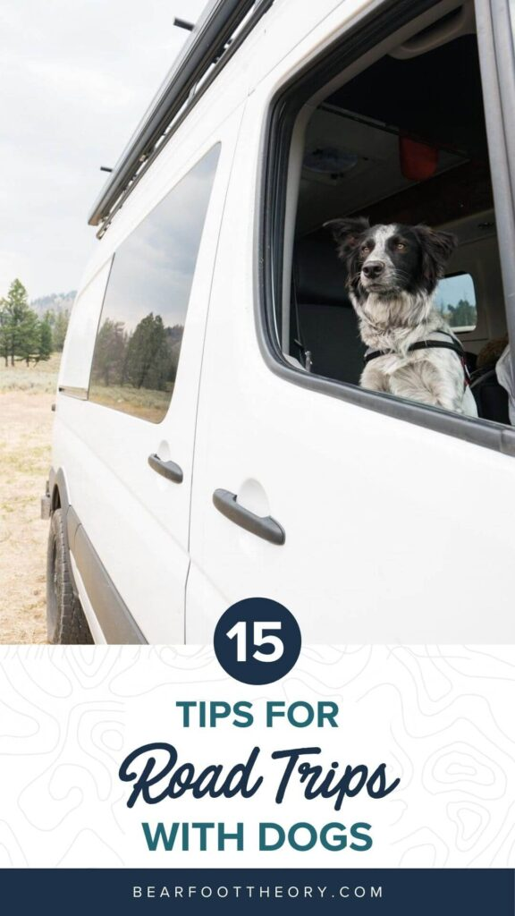 Get 15 practical tips for road trips with your dog, including training & ideas for keeping your dog exercised & entertained on the road.