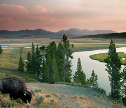 Discover the best places to stay in Yellowstone including first-come, first-served campgrounds, reservable campsites, and rustic lodges.