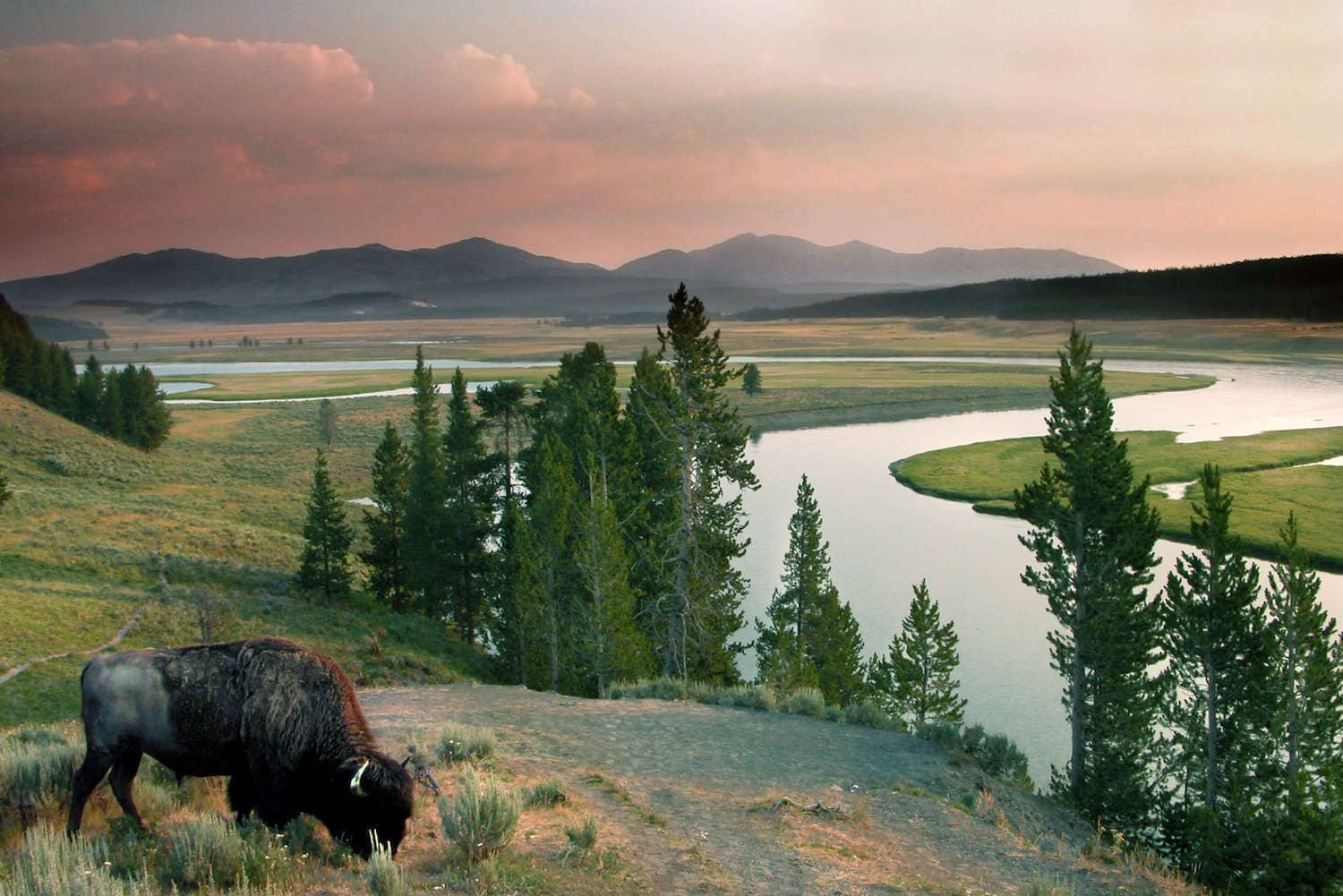 The Best Places to Stay In Yellowstone National Park