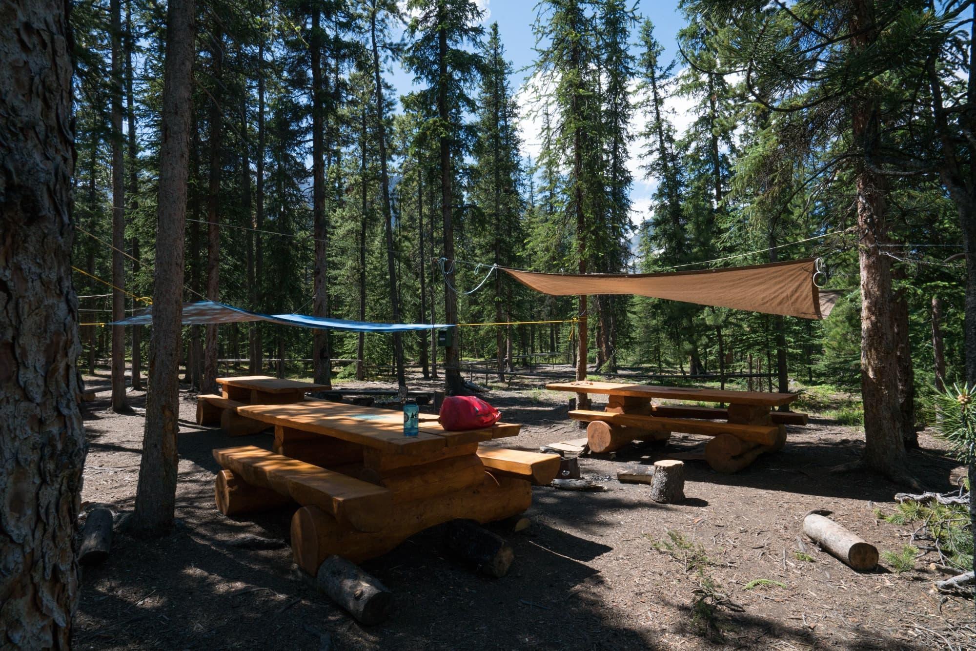 Coronet Creek Campground in Jasper National Park