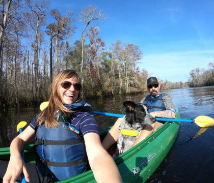 Add some adventure to your South Carolina vacation. Get the details and see photos from my Myrtle Beach kayaking tour with Gaitor Bait Adventures through the Waccamaw National Wildlife Refuge, where you have the chance to encounter alligators, birds, and other wildlife.