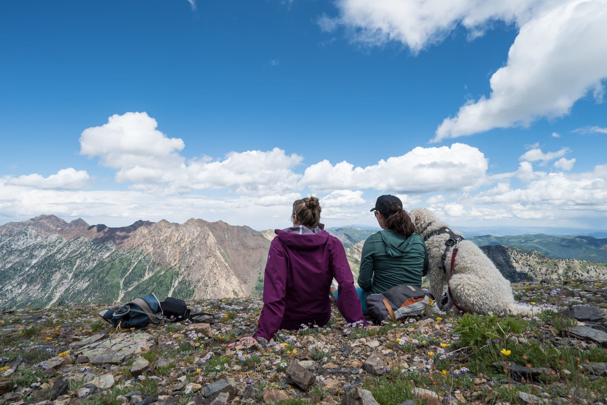 Want to introduce your friends to the outdoors? Check out our helpful tips for taking your friends hiking for the first time. From planning the hike, to packing your backpack, these tips will make for a successful first time on the trail.