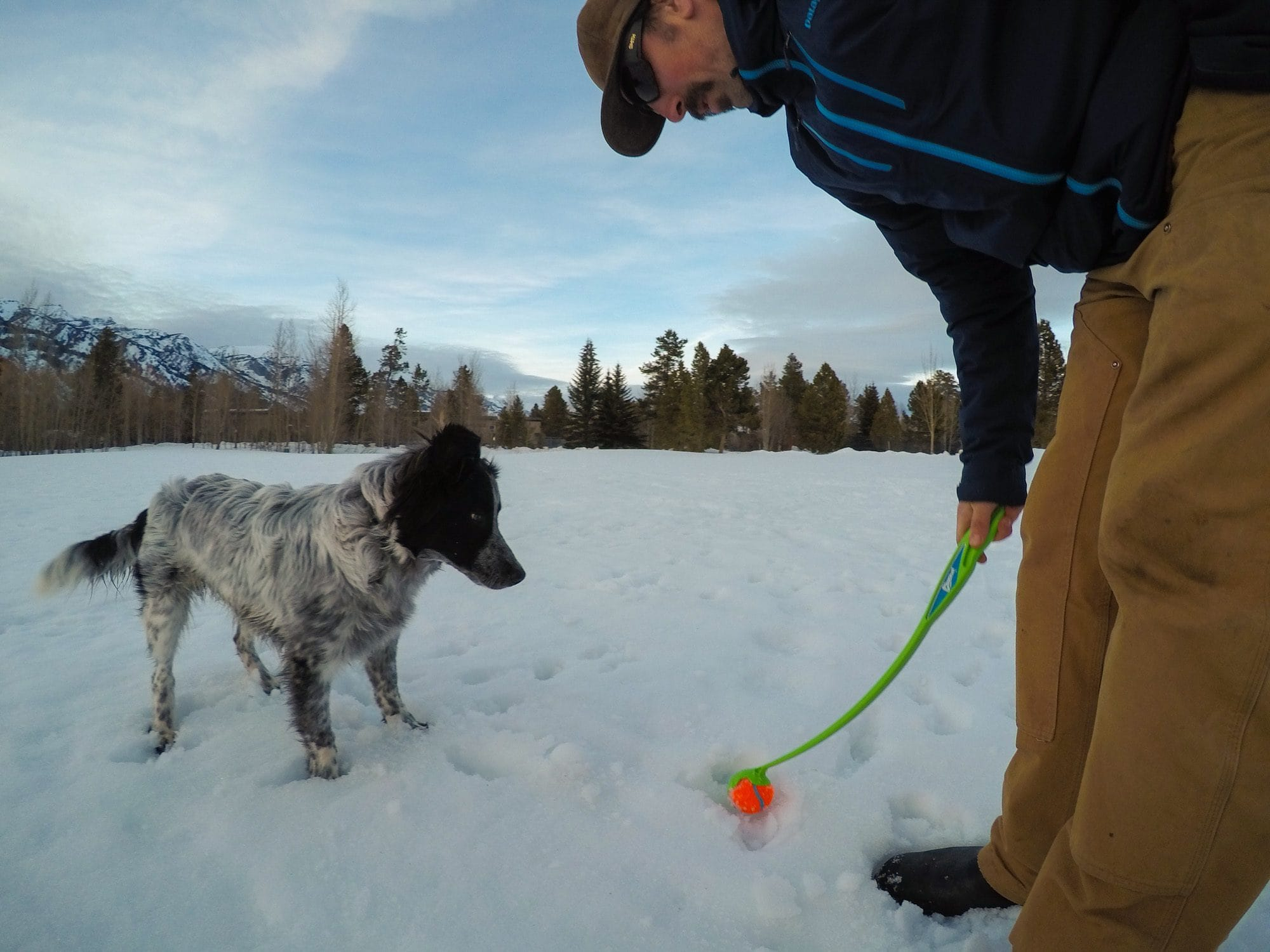 Want to take your canine companion on the trail? Learn how to safely go backpacking with a dog with these 12 dog backpacking tips, including dog nutrition & hydration, dog backpacking gear, leave no trace best practices, and training.