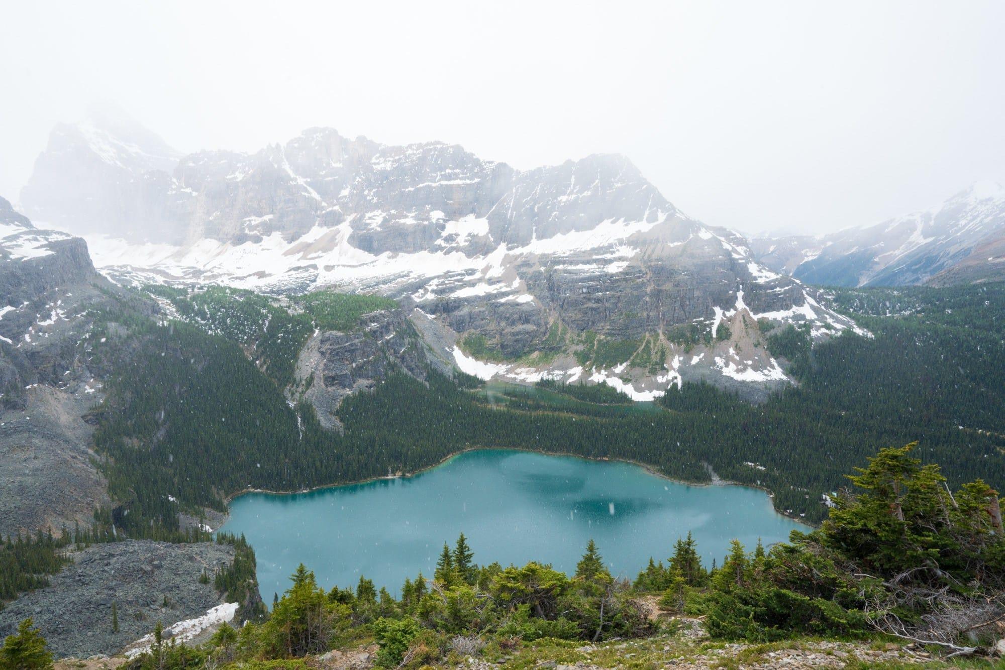 Lake O'Hara Hiking Trails in Yoho National Park