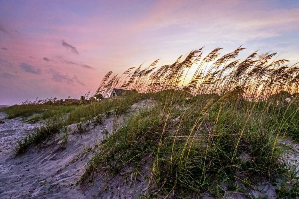 From biking to hiking to birding and searching for seashells there are plenty of outdoor activities on Hilton Head Island to keep you having fun in the sun and active all vacation long.