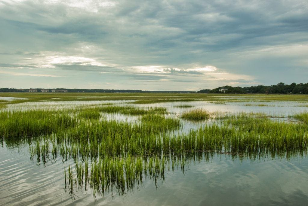 Plan an active vacation with the best outdoor activities on Hilton Head Island including hiking, biking, kayaking, and more.