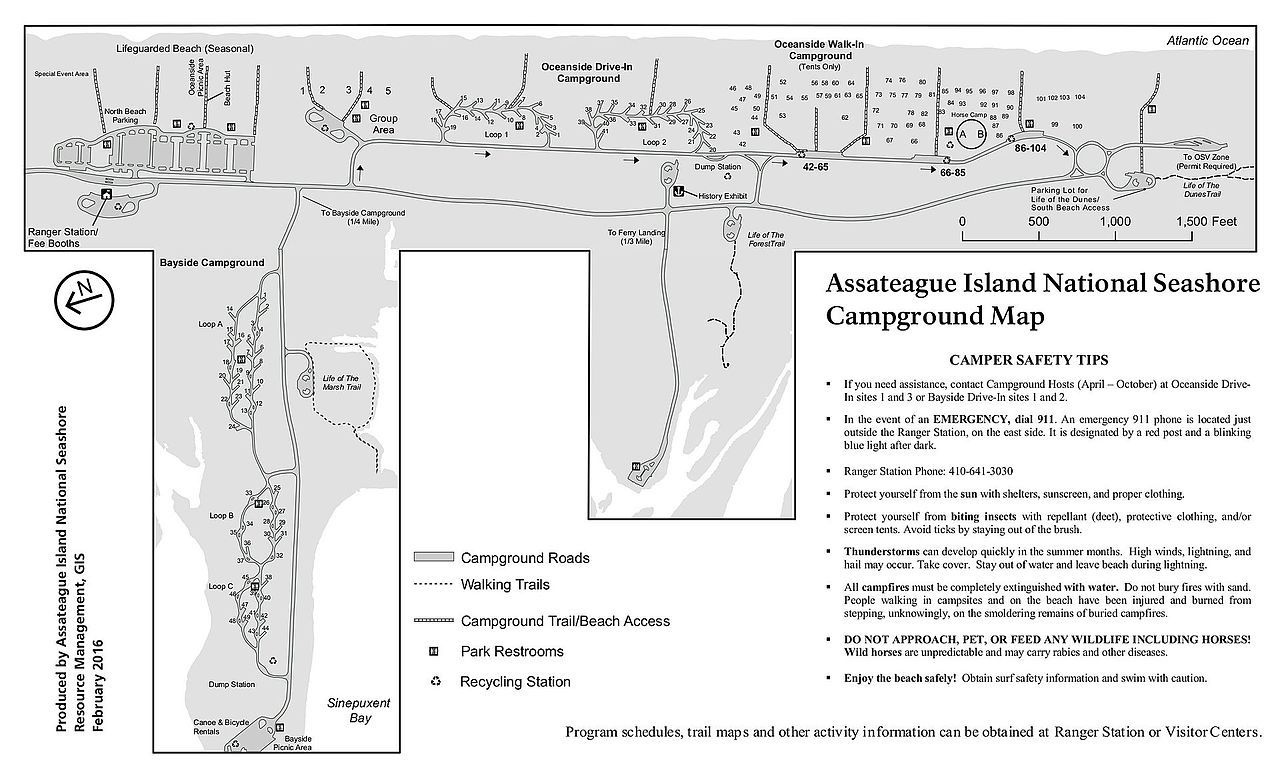 Assateague Island campground map / Get the scoop on camping and things to do on this beautiful beach island.