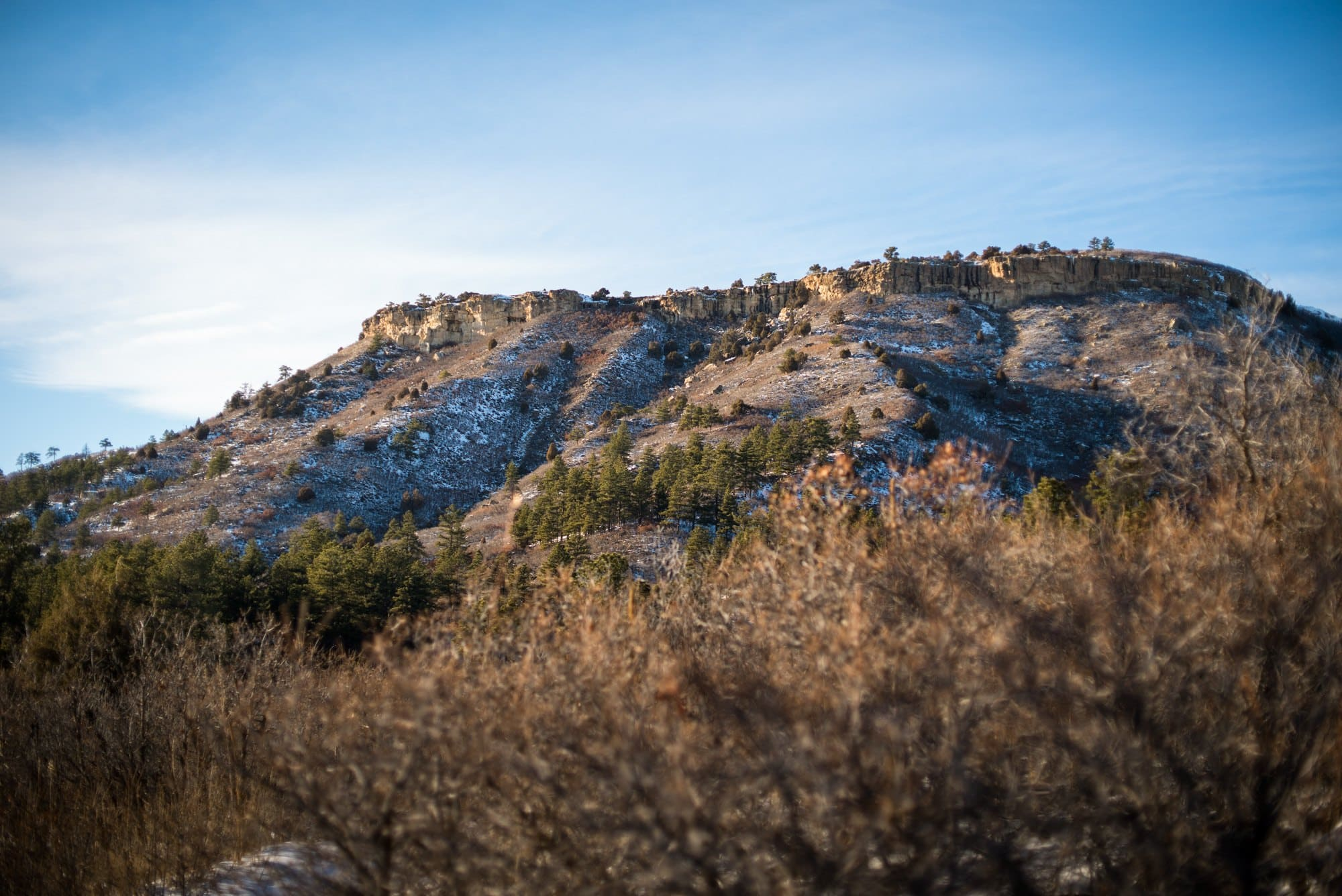 Dawson Butte // Don't wait until the high elevation snow melts to start hiking in Colorado this summer. here are 5 Colorado spring hikes in the Front Range that are perfect for mud season.