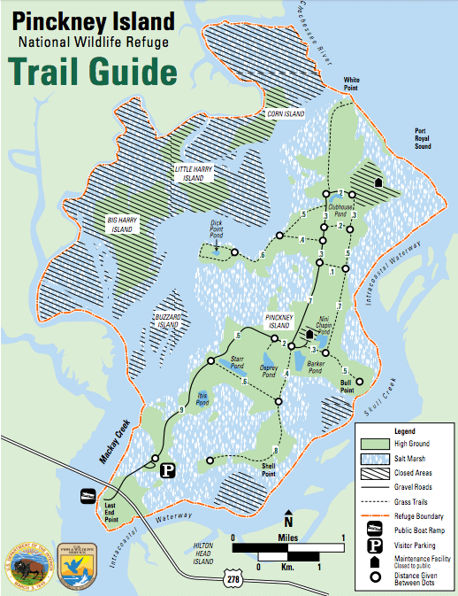 Pinckney Island National Wildlife Refuge Trail Guide // Plan an active vacation with the best outdoor activities on Hilton Head Island including hiking, biking, kayaking, and more.