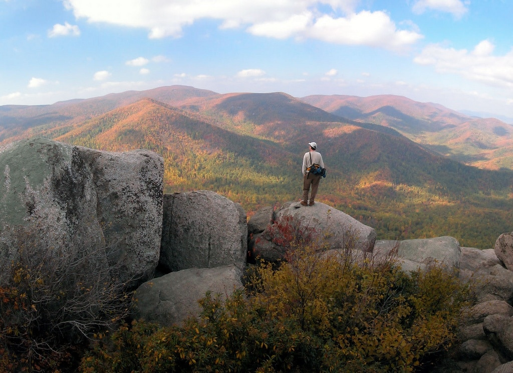 Are dogs allowed in Shenandoah National Park? Learn the trails and campgrounds where dogs are permitted in this blog post.
