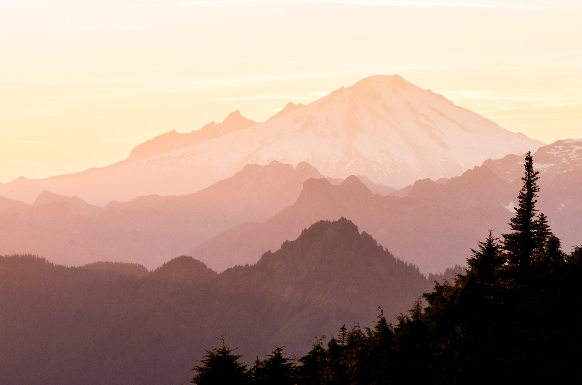 Learn where you can hike with your dog in North Cascades National Park