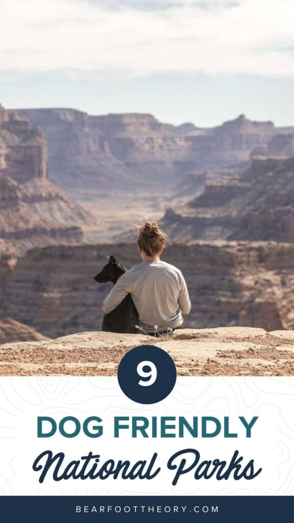 Here are the most dog-friendly National Parks, along with information on trails and campgrounds where pets are permitted.